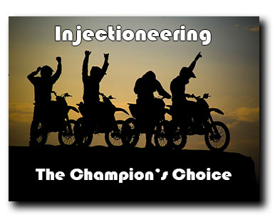 Injectioneering - Chamipon's Choice